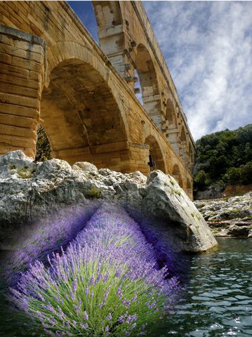 Visit Provence with French Cottages